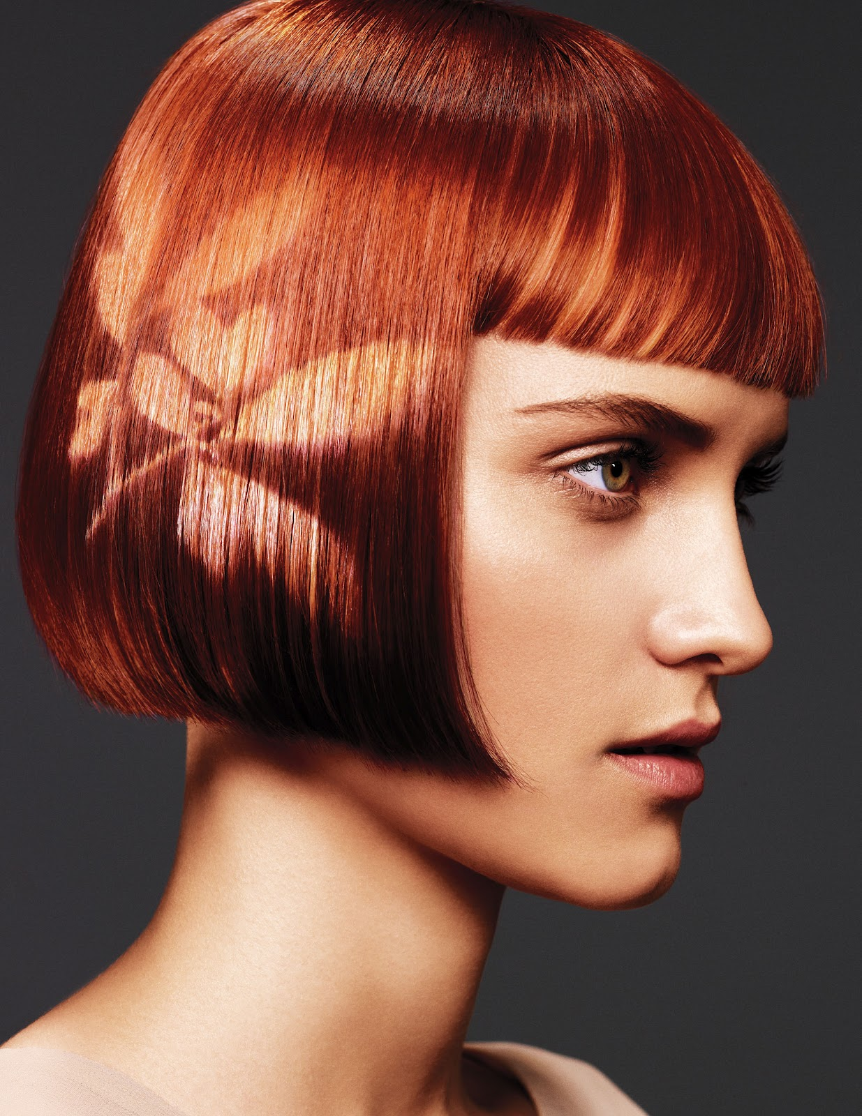 Hair Salon Hair Dye : Aveda Full Spectrum Hair Color Hair Style Trends and Tips - Page 2
