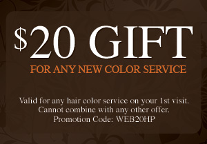 Austin Hair Color Service Coupon