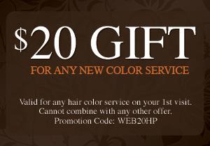 Austin Hair Color Service Coupon